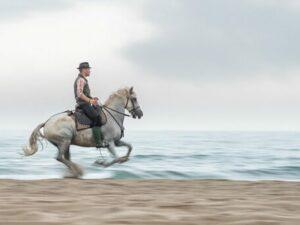 photo cheval sur plage