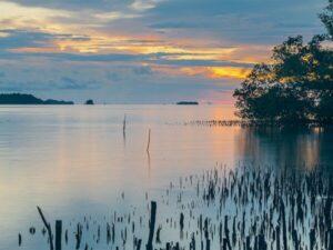 photographie coucher de soleil sur eau
