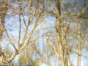waterworld color